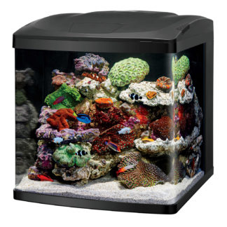 "Coralife LED BioCube 32 Aquarium Kit 20.25"" x 21.875"" x 21.5"""