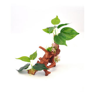 "BioBubble Decorative Ficus Medium Green 8.75"" x 4"" x 13.5"""