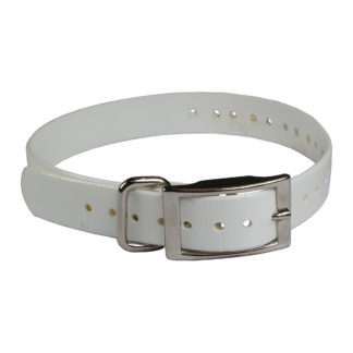 "The Buzzard's Roost Replacement Collar Strap 3/4"" White 3/4"" x 24"""