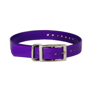 "The Buzzard's Roost Replacement Collar Strap 1"" Purple 1"" x 24"""