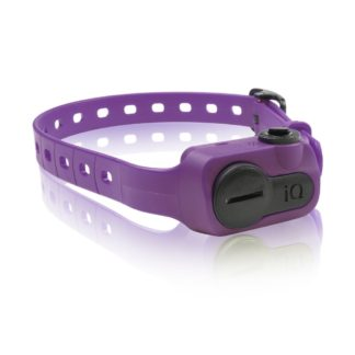 Dogtra iQ No Bark Collar Orange